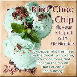 MINT CHOC CHIP E Liquid - Icy peppermint freshness on the throat, with warm, rich cocoa tones that linger in the mouth.